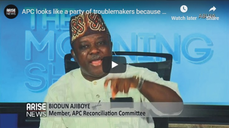 APC looks like a party of troublemakers - Biodun Ajiboye