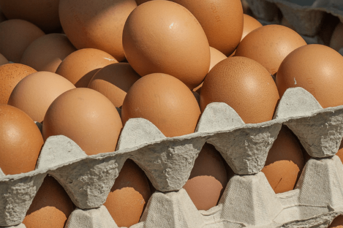 7 Things to Carry Like Crates of Eggs in Your Life