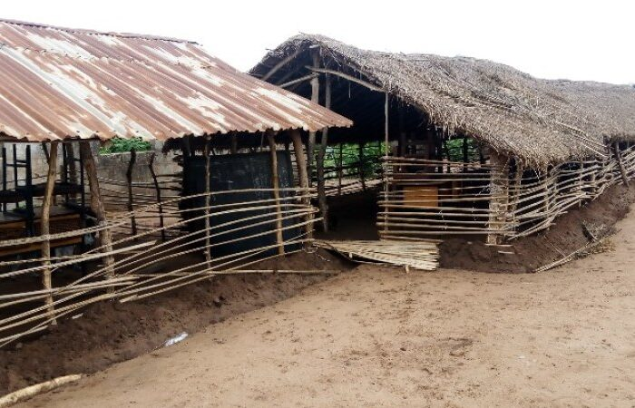 Nigeria: How Covid-19 Deepens Education Crisis in Ogun Communities, Ravaged by Armed Herdsmen