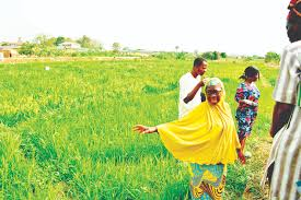 LCCI Canvasses Measures to Tackle Concerns over Agric Targets