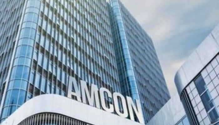 CLO, Global Peace MD on fierce legal war with AMCON, WEMA bank over N178m loan