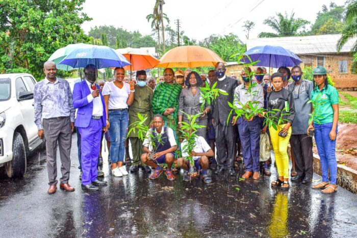 World Environment Day: Triple G, FABE Foundation Holds Tree Planting Exercise